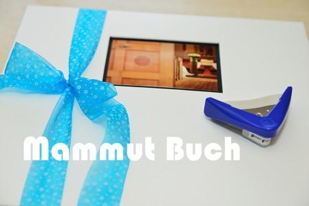 BuchMammut 8313-449x300 in Fotobücher