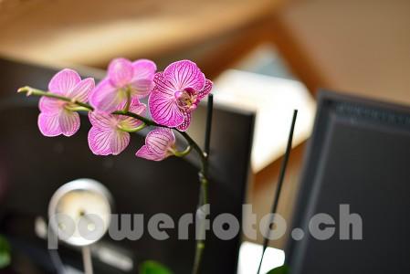 PowerfotoWork 5052-090-449x300 in Mein Equipment