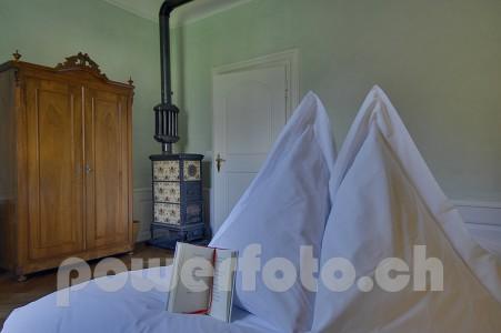 SchlossSins 8900-004-451x300 in Historic Schlosshotel-Sins
