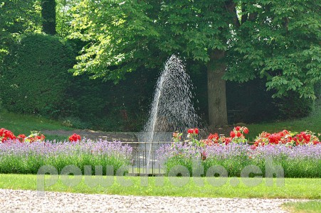 AdlerReichenau 5864-013-451x300 in Hotel Adler Reichenau